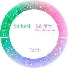metodo moco cervical embarazo