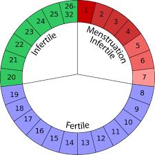 control de ovulacion