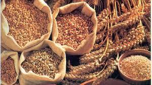 Cereales integrales para quedar embarazada